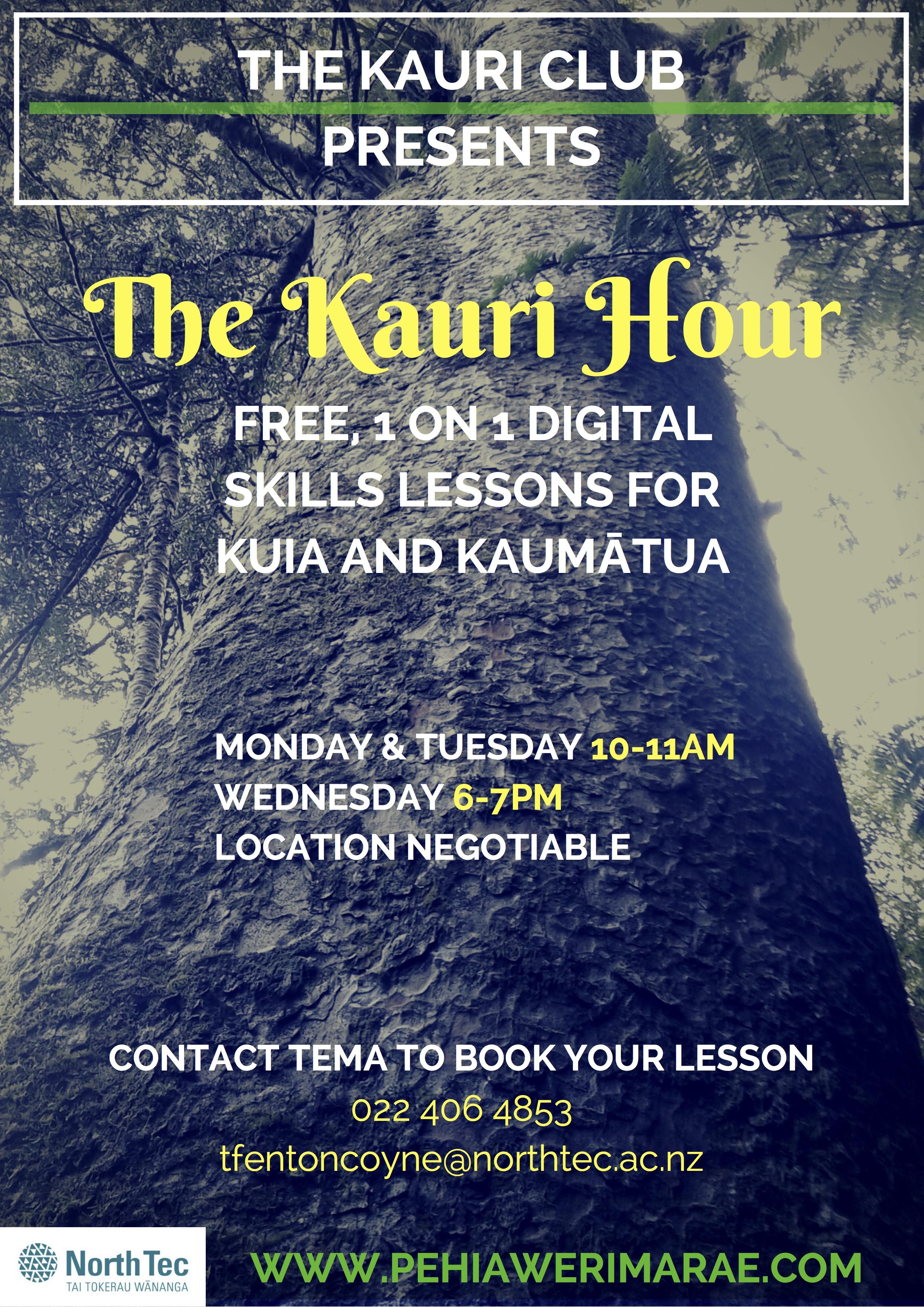the-kauri-hour